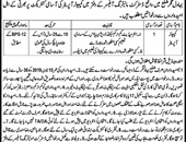 District Monitoring Officer Bahawalpur Offers Jobs 2019