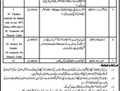 Government Of KPK Jobs