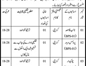Government Of Sindh Jobs