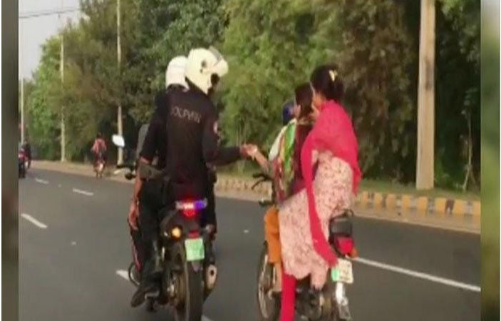 Dolphin Force Breaks the Internet by Helping Female Riders