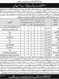 Jobs in Executive Engineer District Jhang 10 July 2018