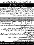 Jobs In Higher Education Department Of Punjab 26 Feb 2018