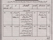 Assistant Director jobs in Sports Youth and Culture Department Muzaffarabad