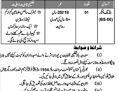 Cantt Board Jehlum Jobs