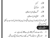 Customer and Delievery Service jobs in Peshawar
