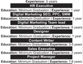 Holistic Group Of Companies Offering Jobs In Lahore