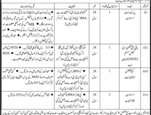 Job In Sindh Agriculture 04 Jan 2019