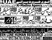 Meson,Shuttering Carpenter,Steel Fixer Jobs In  UAE