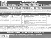 National Projects Coordinator Job In Ministry of National Food Security & Research Islamabad
