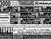 Octopus Overseas Employment Promoters  Karachi Offering jobs In UAE