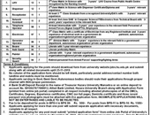 Receptionist,Dispenser,Computer Operator, Jobs In Hazara University Mansehra