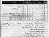 Sanitary Worker,Database System Administrator Jobs In Combined Military Hospital CMH Bannu