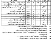 Sanitary Worker,Electrician,Security Officer,Book Binder Jobs In Quaid E Azam Library Lahore