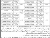 Shaheed Mohtarma Benazir Bhutto Medical University Offering Jobs In Larkana
