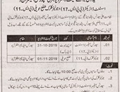 Sport Youth and Culture offering Jobs In Muzaffarabad