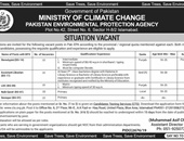 Steno Typist,Assistant Librarian,Lower Division Clerk Jobs In Pakistan Environmental Protection Agency Islamabad