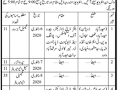 Team Supervisor jobs in Directorate Of Labour Karachi