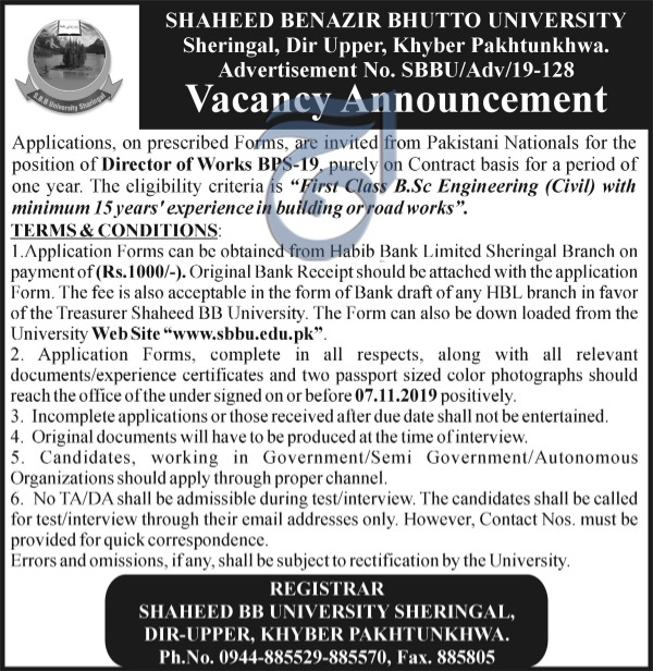Director Jobs In Shaheed Benazir Bhutto University  Upper Dir