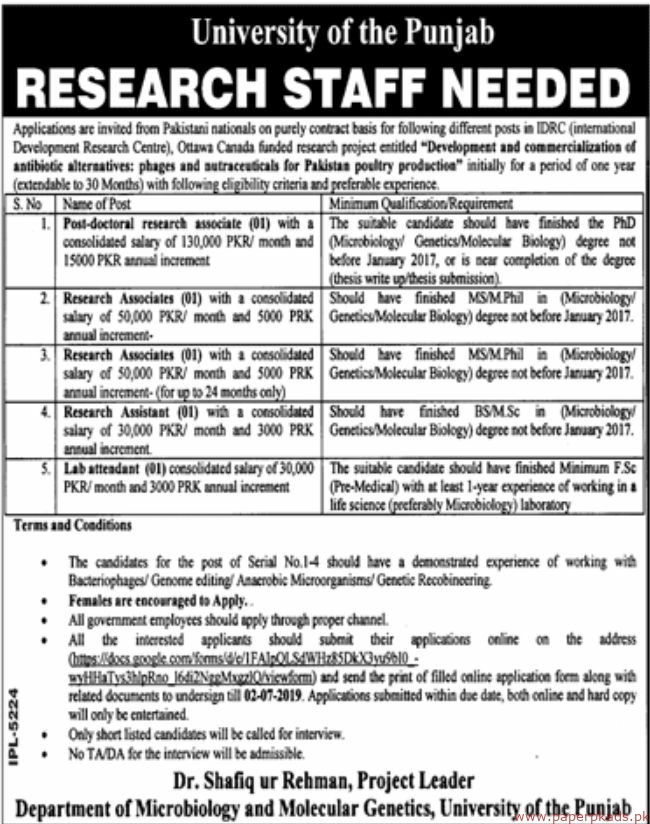 Get a Latest Jobs In University Of The Punjab 2019