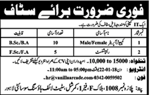 Jobs in an IT Company 21 Jan 2018