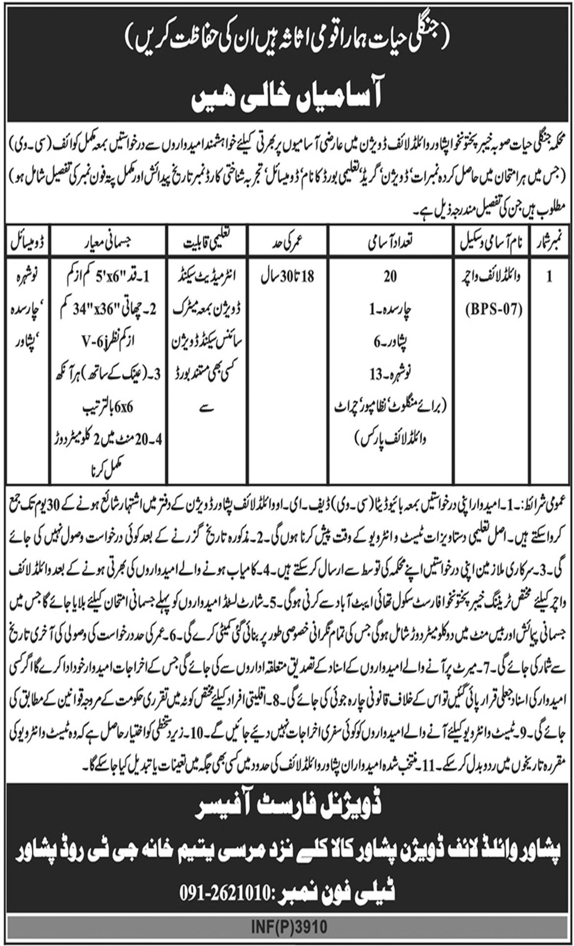 Jobs In Announced In Wildlife Protection Department KPK 09 Oct 2018