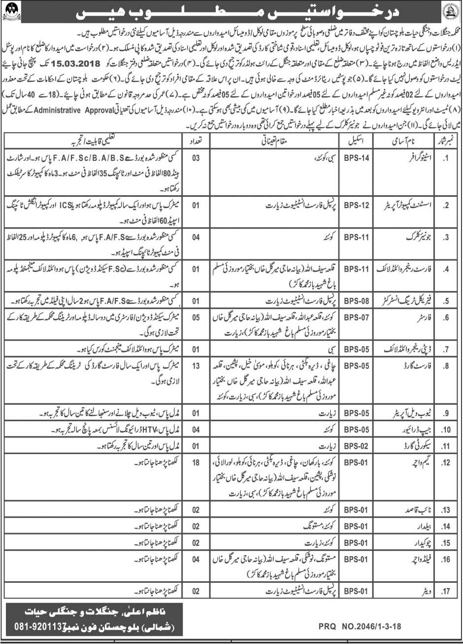 Jobs in Department Forest and Wildlife Balochistan 02 March 2018
