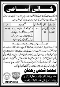 Jobs in Directorate of Local Fund 16 April 2018