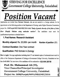 Jobs in Govt College University Faisalabad 20 March 2018