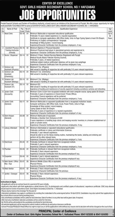 Jobs in Govt Girls Higher Secondary School Hafizabad 30 March 2018