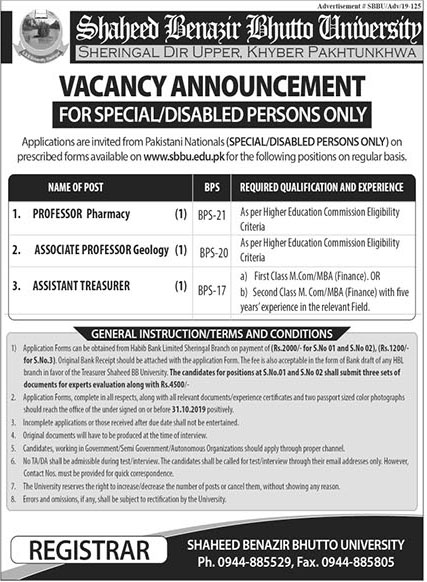 Shaheed Benazir Bhutto University  Offering Jobs In Upper Dir