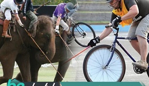 Cycle And Elephant Polo