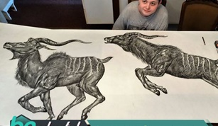 Genius Boy Makes Amazing Animal Drawings