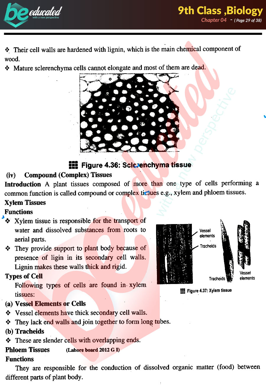 9th Class Biology Book Kpk Pdf